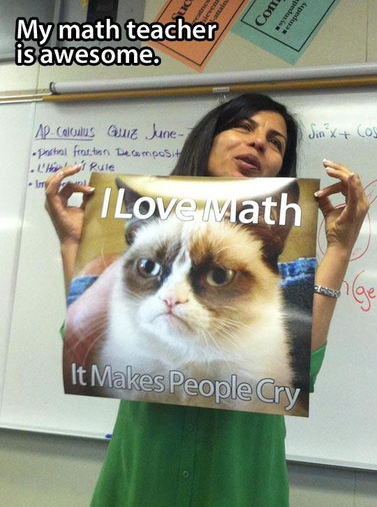 funny-math-teacher-Grumpy-Cat-1-620x