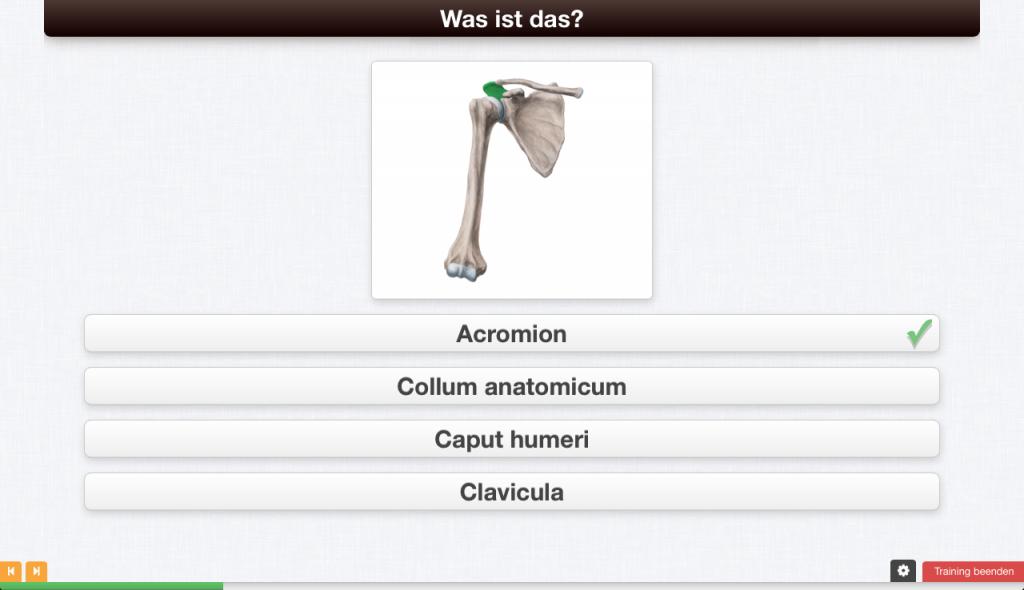 Eine Trainingseinheit von Kenhub à la Multiple Choice - Anatomie online lernen.