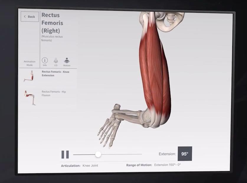 Anatomie App von 3D4Medical wird zum Präptisch