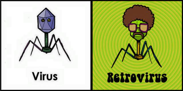 retorvirus