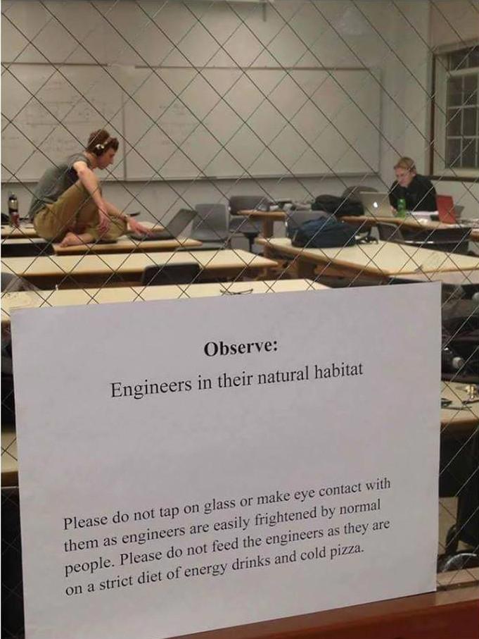 ingenieure_natuerliches_habitat