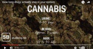 Beitragsbild zum Video, wie lange Drogen im Körper nachweisbar sind