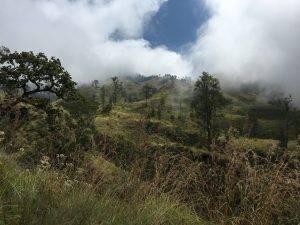 Aussicht beim Wandern auf dem Rinjani