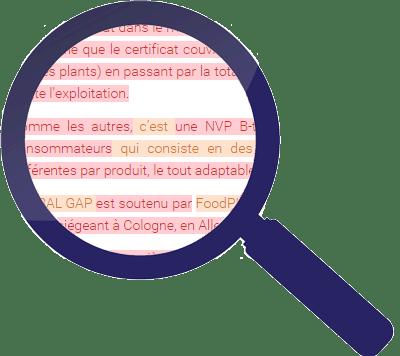 Lupe durch die man einen Text sieht, der orange und rot markierte Passagen enthält - entspricht Übereinstimmungen der Plagiatsprüfung.