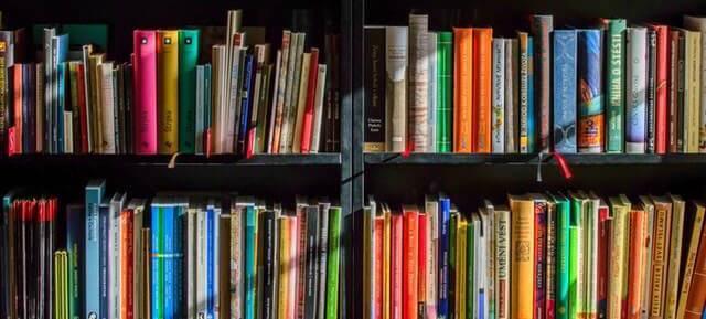 Bachelorarbeit: Literatur - viele Lehrbücher stehen in zwei Regalen