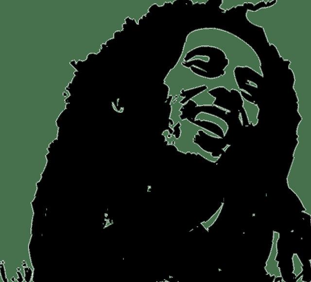 Reggae-Party in Paris: Silhouette von Bob Marley