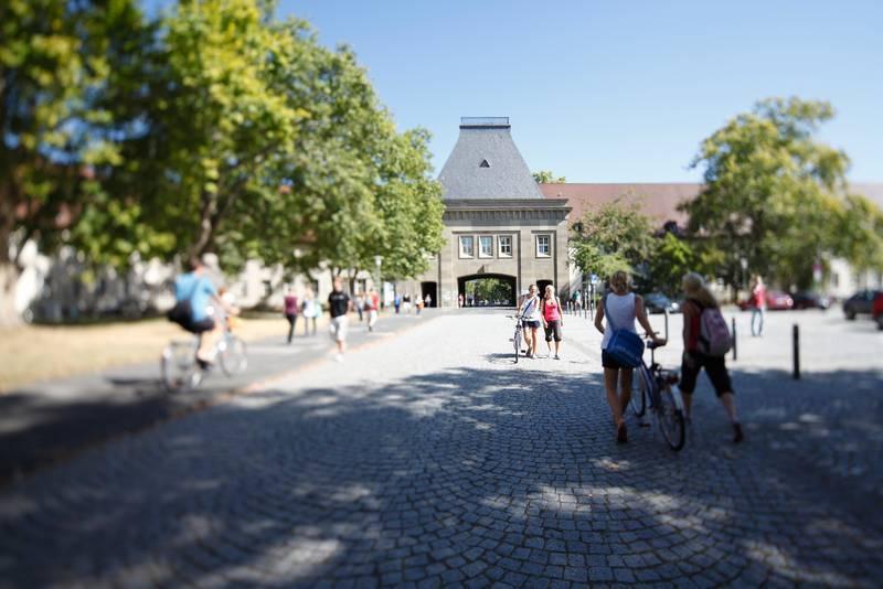 Uni Mainz Medizin studieren